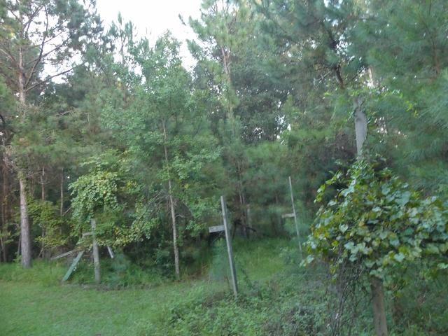 8465  Chisolm Plantation Road Edisto Island, SC 29438