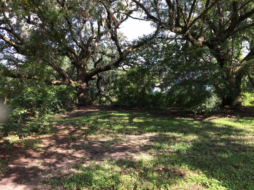 Centerville Homes For Sale - 1708 Brantley, Charleston, SC - 10