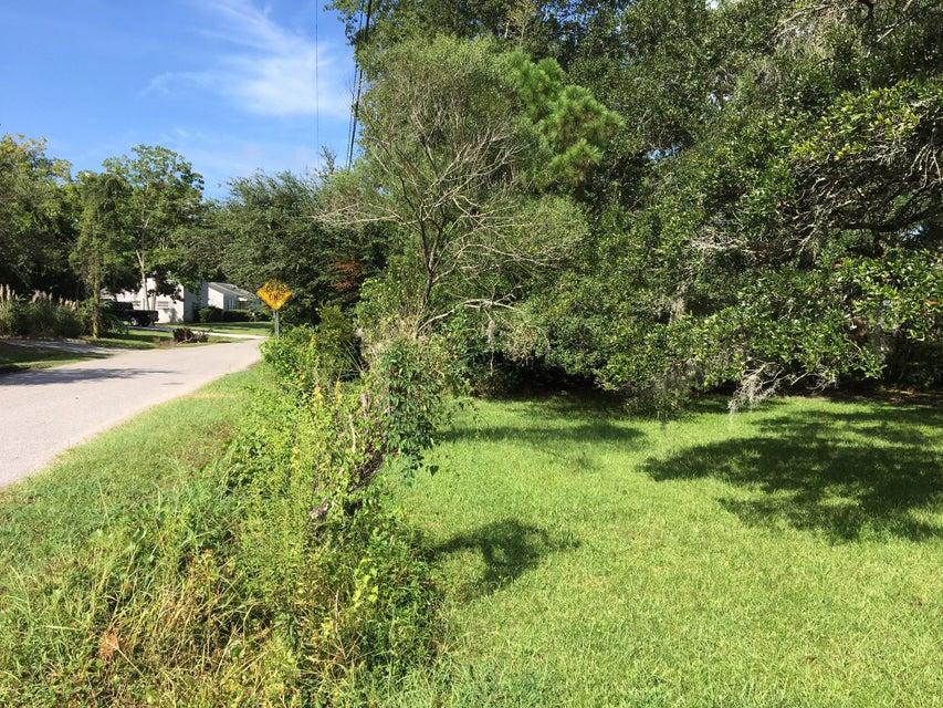 Centerville Homes For Sale - 1708 Brantley, Charleston, SC - 9