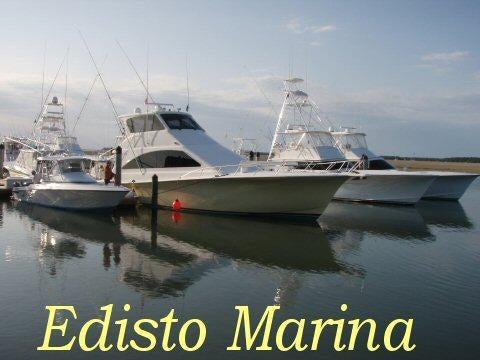 31  Palmetto Pointe Ln Edisto Island, SC 29438