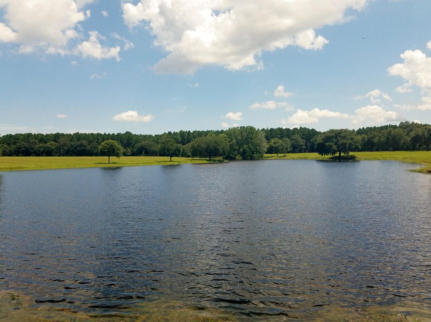 Locountry.com - MLS Number: 17024631