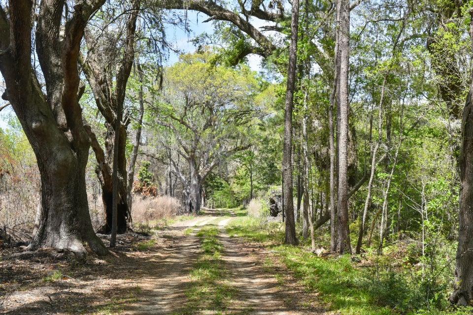 2  Maybank Wadmalaw Island, SC 29487