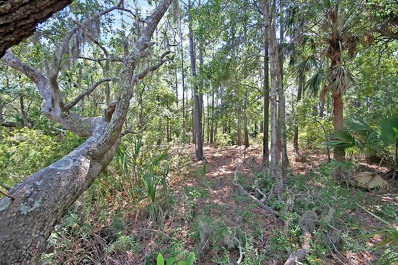 Marshwalk Ace Trail Seabrook Island, SC 29455