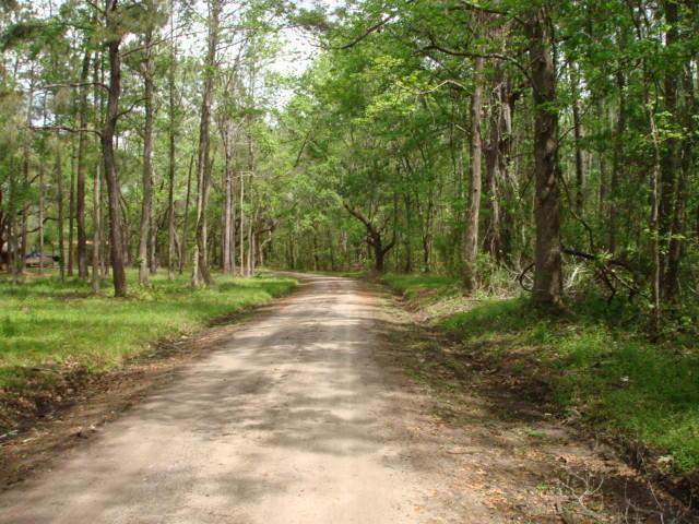 44  Maxie Road Edisto Island, SC 29438