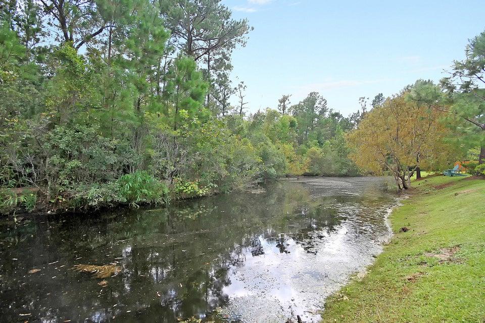 489  Nelliefield Trail Charleston, SC 29492