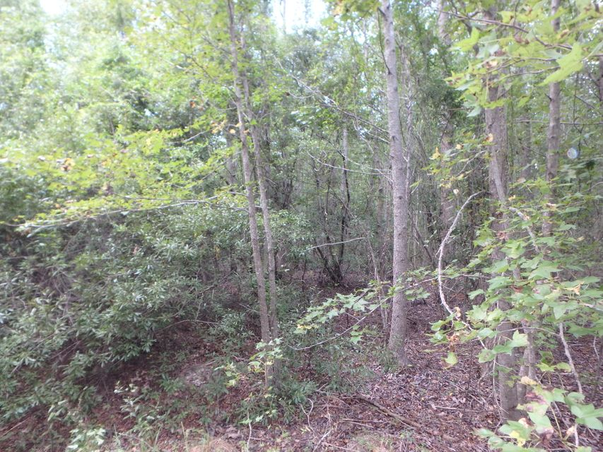 Lot 2-A  Ridgemont Way Summerville, SC 29486