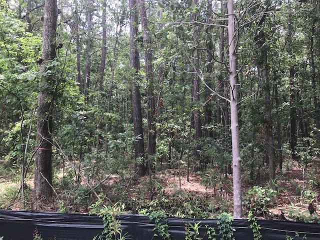 Tbd  Lost Oaks Bluffton, SC 29910