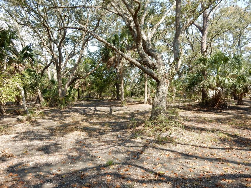 41  Hammocks Way Edisto Island, SC 29438