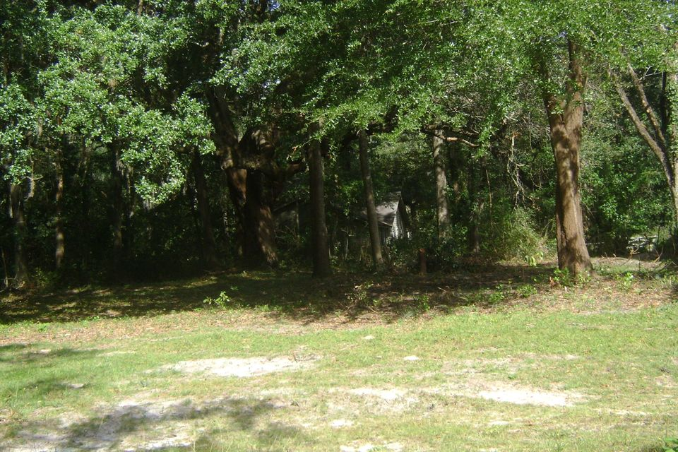 None Homes For Sale - 1217 Wichman, Walterboro, SC - 1