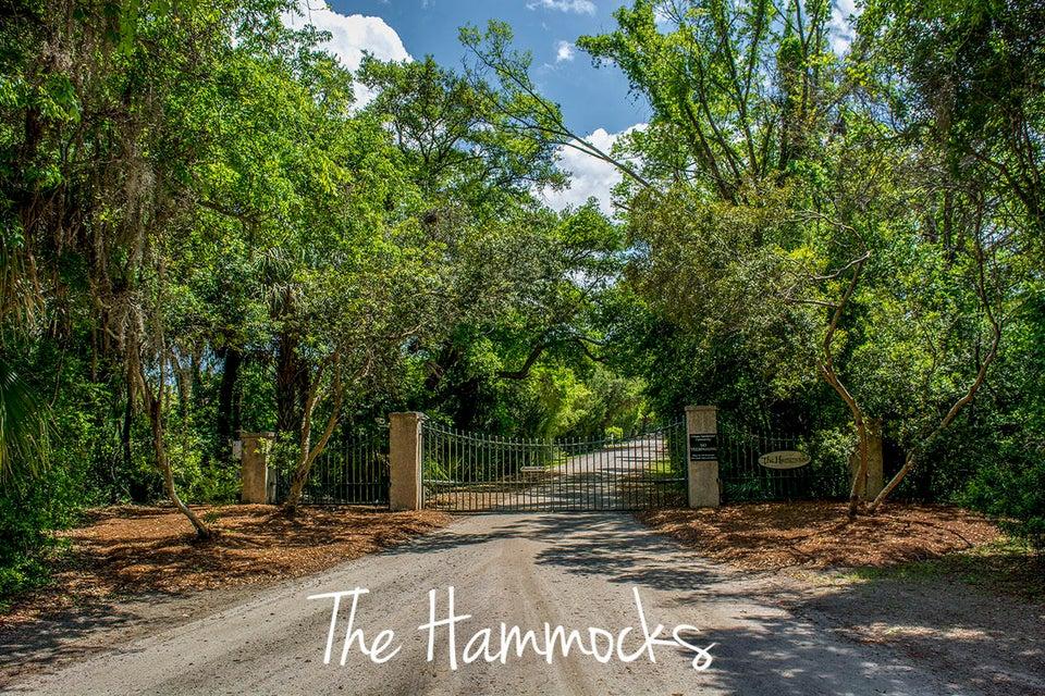 38  Hammocks Way Edisto Island, SC 29438