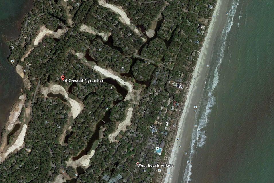 46  Crested Flycatcher Kiawah Island, SC 29455