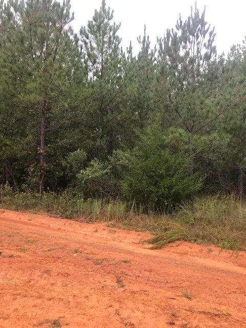 Peaceful Creek Road Edgefield, SC 29824