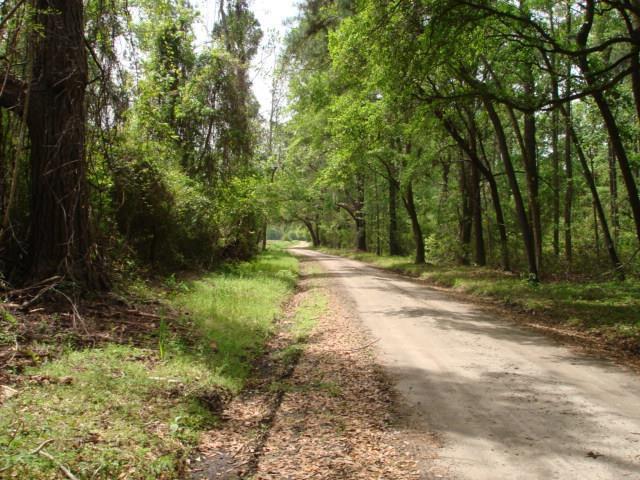 052  Chisolm Plantation Road Edisto Island, SC 29438