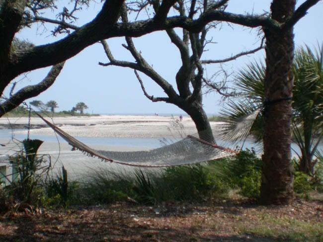 1001  Jungle Road Edisto Island, SC 29438