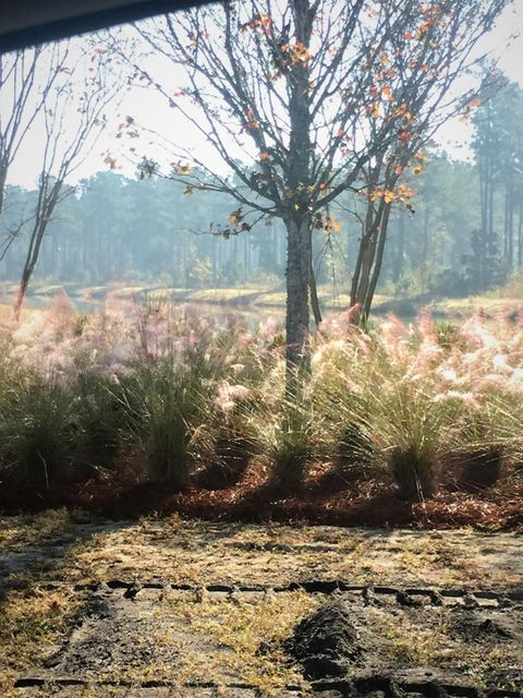 416  Watergrass Way Summerville, SC 29485