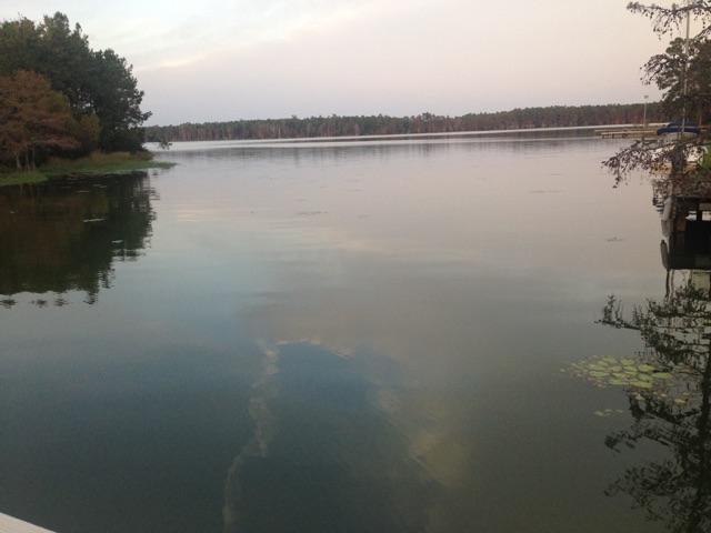 407  Lake Moultrie Drive Bonneau, SC 29431