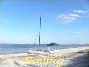 61  Palmetto Pointe Edisto Island, SC 29438