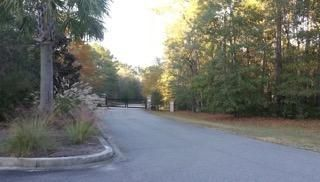 55  Peppergrass Trail Ravenel, SC 29470