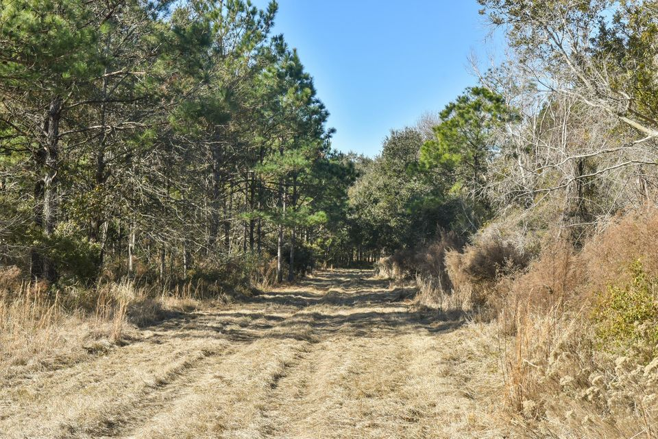Whaley And Seabrook Lots For Sale - 0 Jehossee, Edisto Island, SC - 12