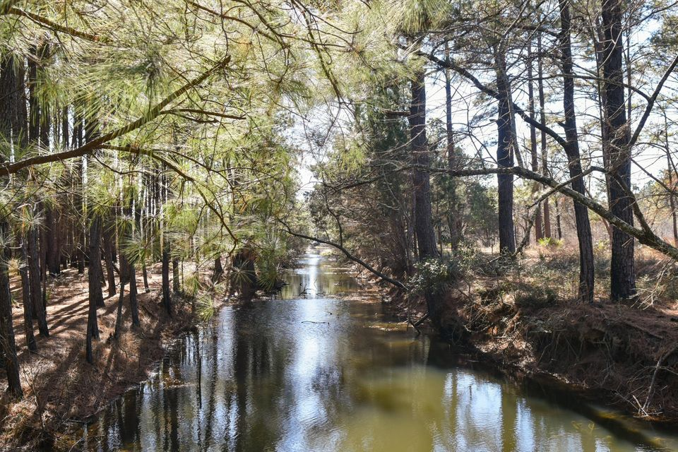 Whaley And Seabrook Lots For Sale - 0 Jehossee, Edisto Island, SC - 10