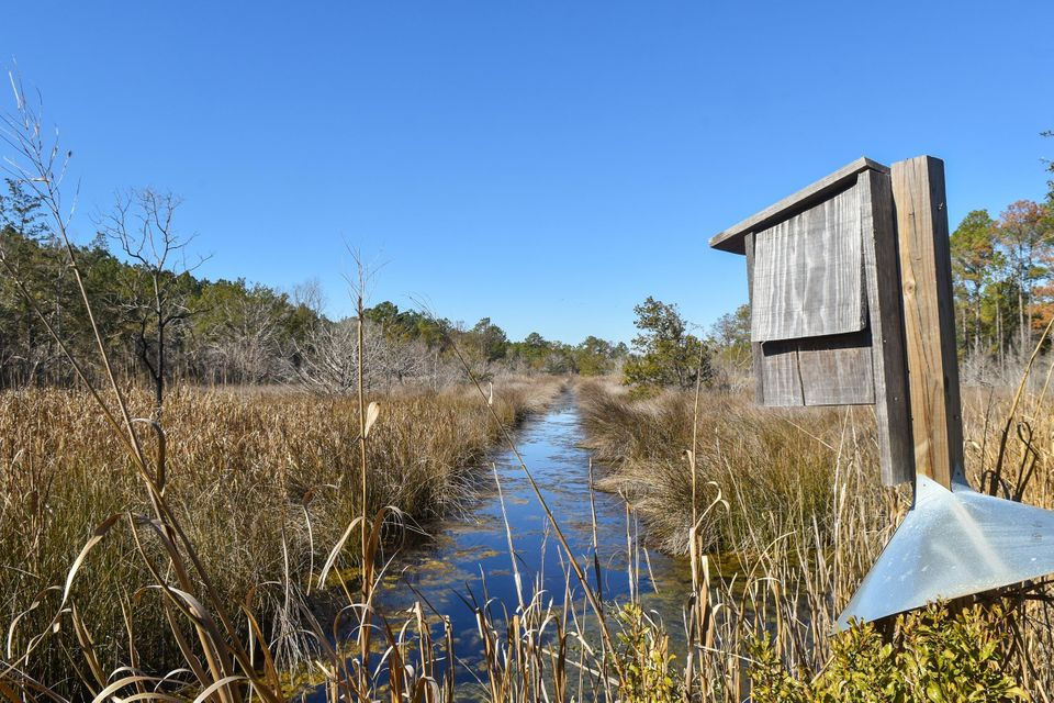 Whaley And Seabrook Lots For Sale - 0 Jehossee, Edisto Island, SC - 9