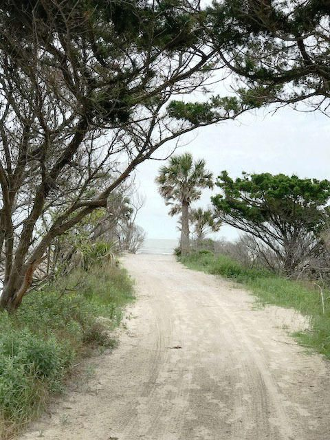 Jeremy Cay Homes For Sale - 49 Planters Retreat, Edisto Island, SC - 4