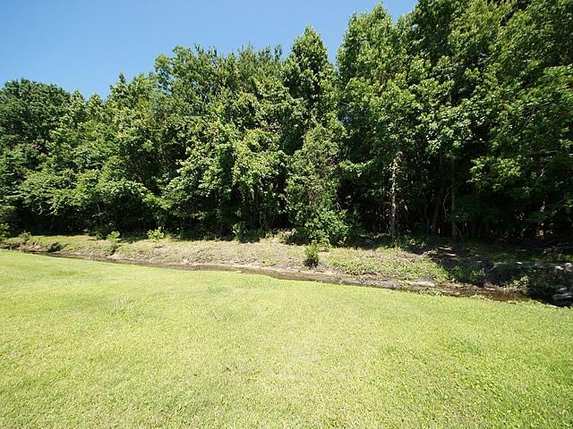 Shadowmoss Homes For Sale - 223 Burnham, Charleston, SC - 9