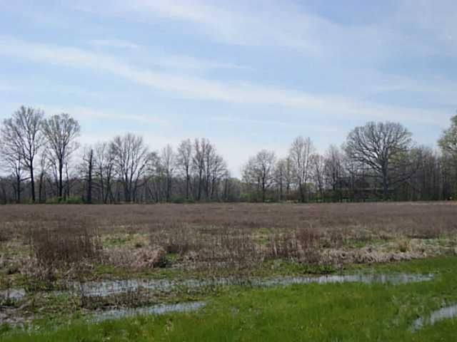 Photo of home for sale in Ostrander OH