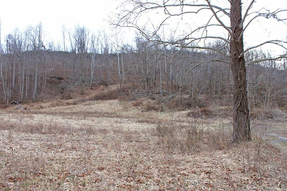 Photo of home for sale at 0 54.4 Ac. St. Rt. 772, Piketon OH