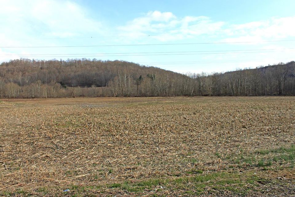 Photo of home for sale at 0 37.3 Ac Chenoweth Fork Road, Piketon OH