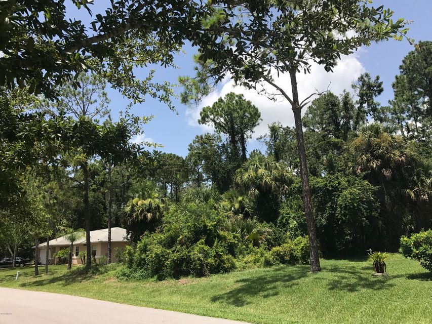 18 Smollett Place, Palm Coast, FL 32164