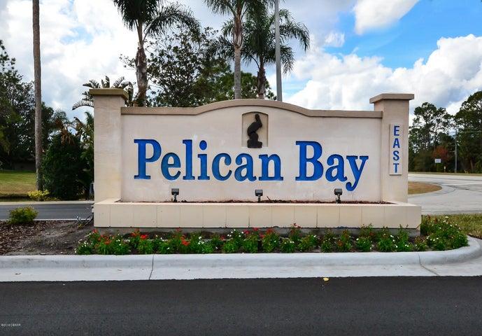 175 Grey Widgeon Daytona Beach - 29