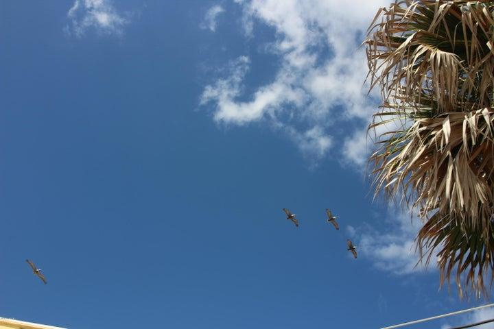 2954 Sea Oats Daytona Beach - 23
