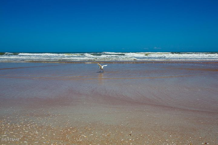 2100 Ocean Shore Ormond Beach - 32