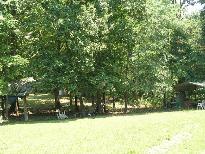 MLS: 419136: 012 Bowed Tree Rd Eddyville