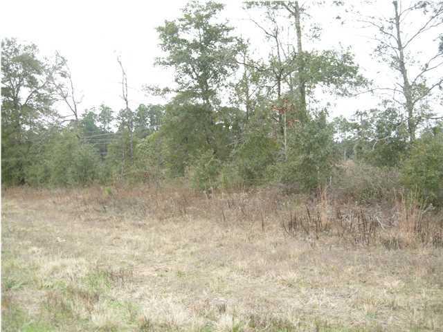 Lot B N Hwy 331 - 5 16 Acres