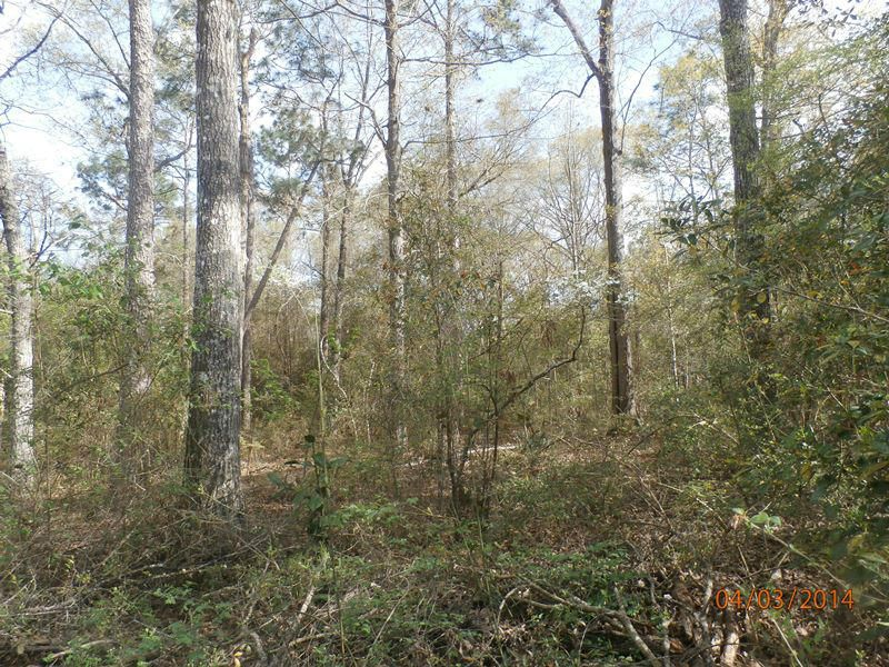 Lot 23 Kings Lake Boulevard