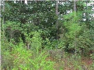 Lot 25 E Wild Blueberry Way