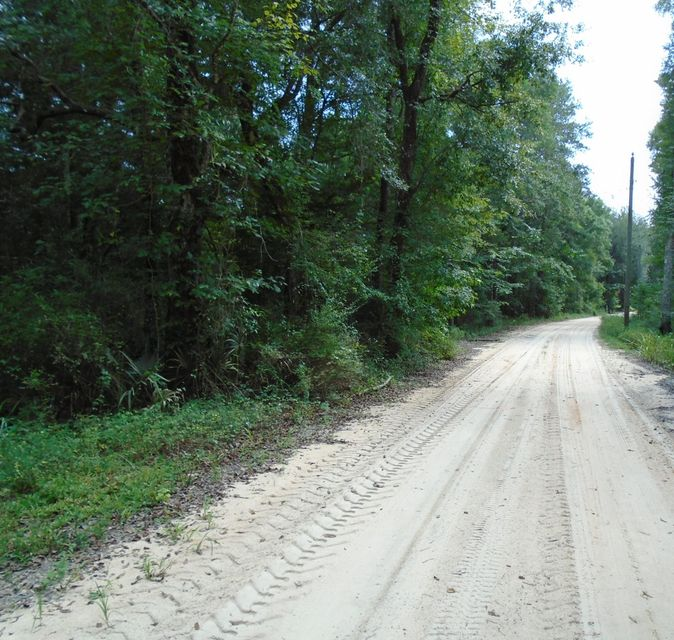 14 Big Cedar