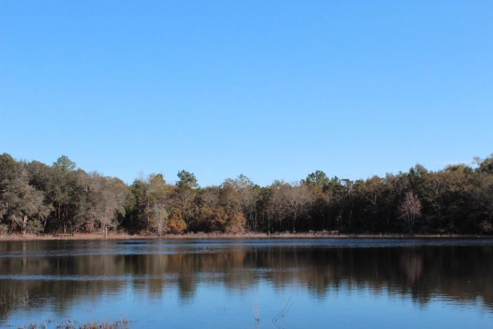 Photo of home for sale at 42AC Co. Hwy. 185, Defuniak Springs FL