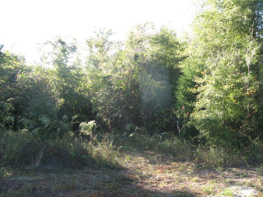 01 Belaire Drive, Marianna, FL 32446