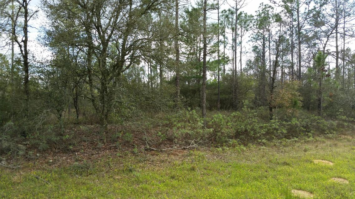 8.5 acres HIGHWAY 20, Sunnyside, FL 32461