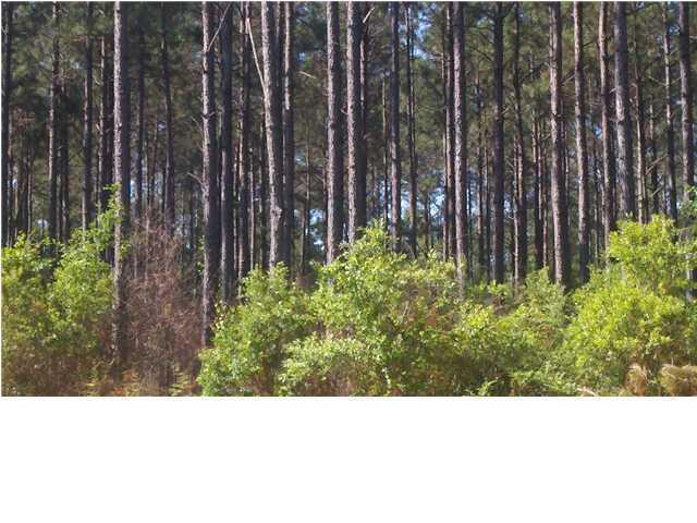 2941 Acres Long Road, Mossy Head, FL 32434