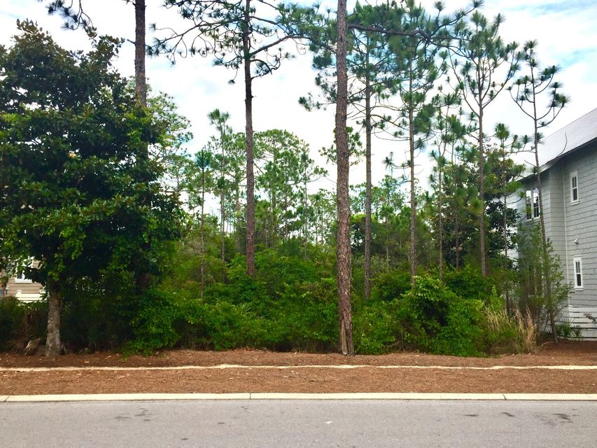 458 E East Royal Fern Way Lot 44, Santa Rosa Beach, FL 32459