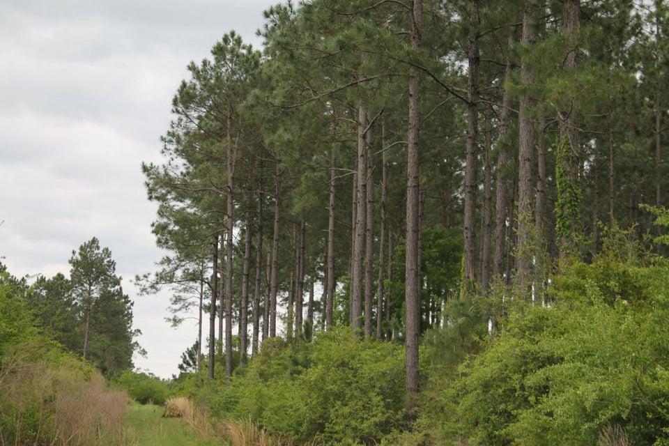 10 AC XXX Bear Bay Flats Road, Paxton, FL 32538