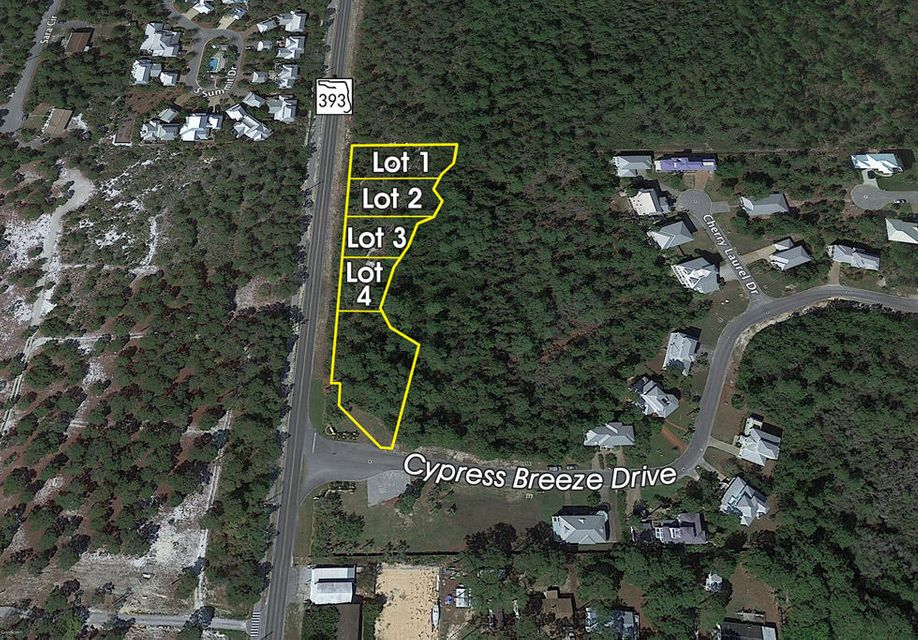 Lot 2 S Co Hwy 393, Santa Rosa Beach, FL 32459