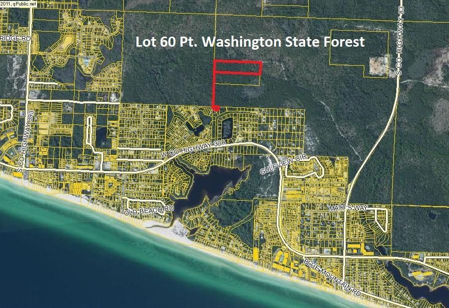 LOT 60 Pt Washington State Forest, Santa Rosa Beach, FL 32459
