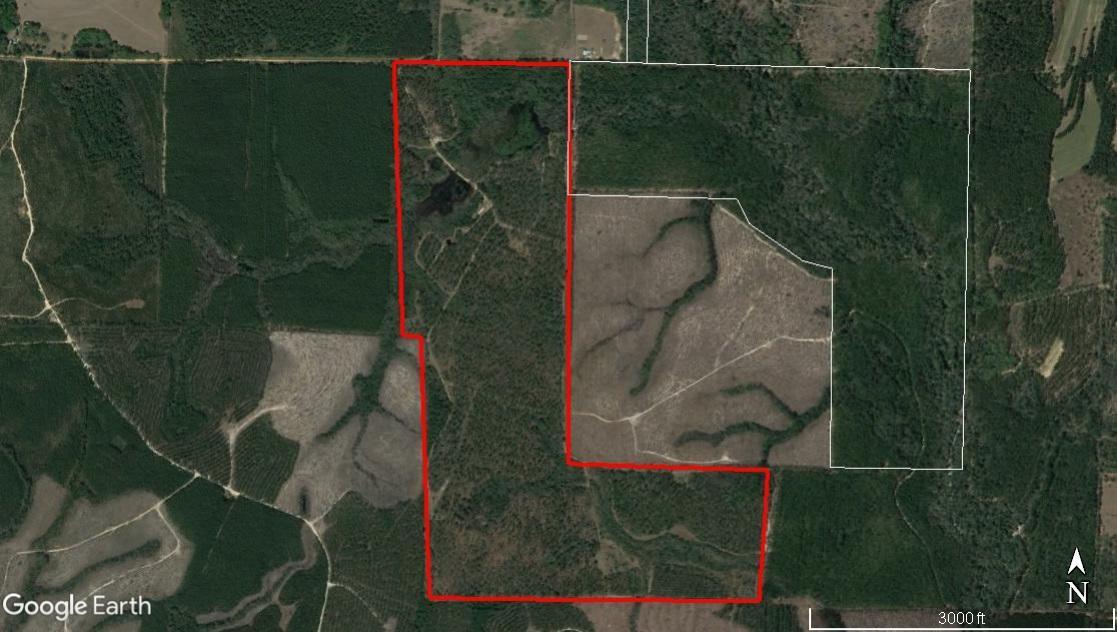 233 Acres E Plympton
