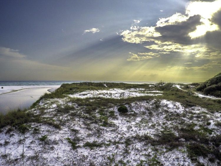 000 Bannerman Beach,Santa Rosa Beach,Florida 32459,Vacant land,Bannerman Beach,20131126143817002353000000