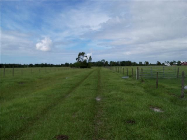 Xx SW Fox Brown Road Indiantown FL 34956 - photo 11